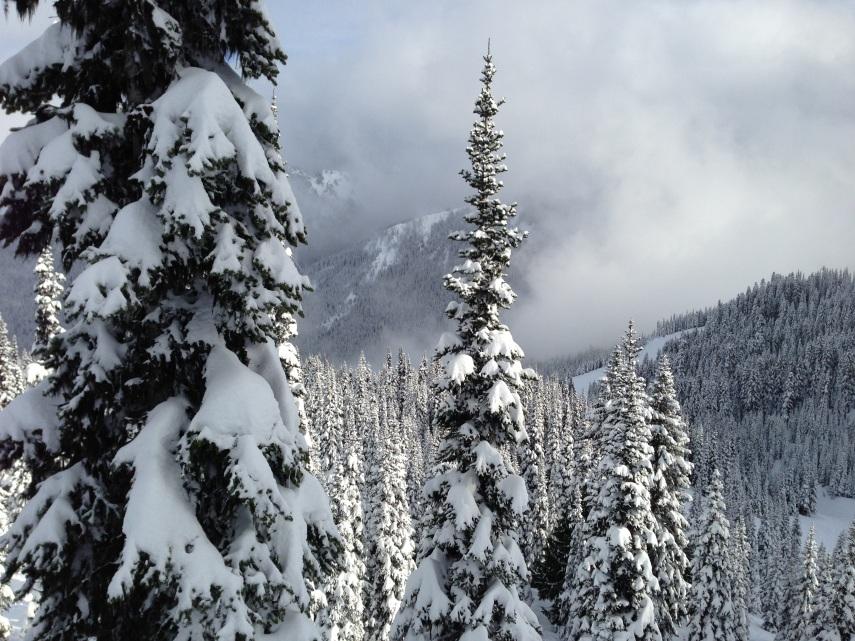 You've gotta love the Cascades