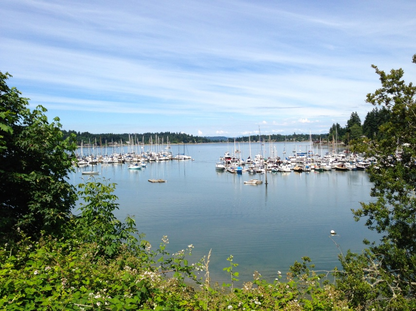 Quartermaster Harbor, a large, shallow, calm inlet that gives Vashon the shape of a crab's crawl