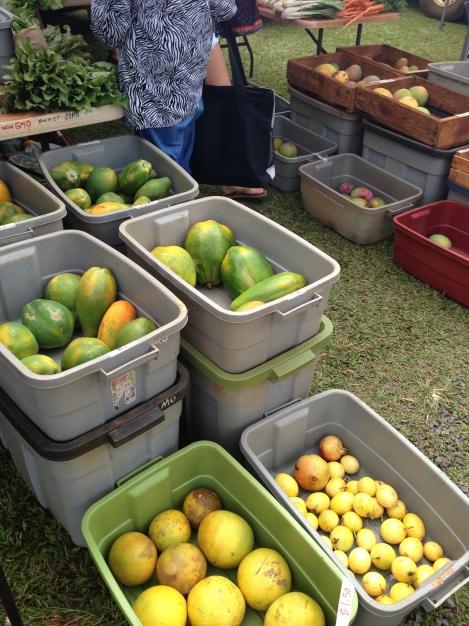 papayas mangos pomelos lilikoi