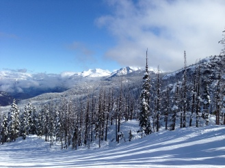 A wild fire a few years ago created some fantastic tree skiing in the Crystal zone on Blackcomb